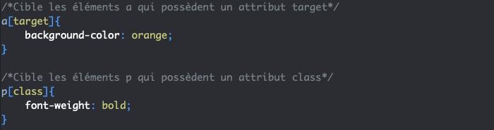 Exemple d'utilisation de sélecteurs CSS d'attributs