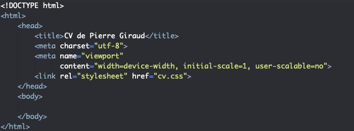 Squelette HTML de l'élément head pour la création d'un site CV responsive en HTML et CSS