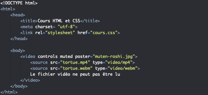 On utilise les attributs de l'élément video en HTML pour personnaliser notre video