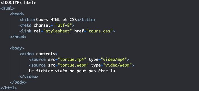 On utilise l'élément HTLM source avec video pour proposer plusieurs formats de video