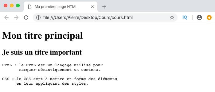 Résultat visuel de l'utilisation de l'élément HTML pre