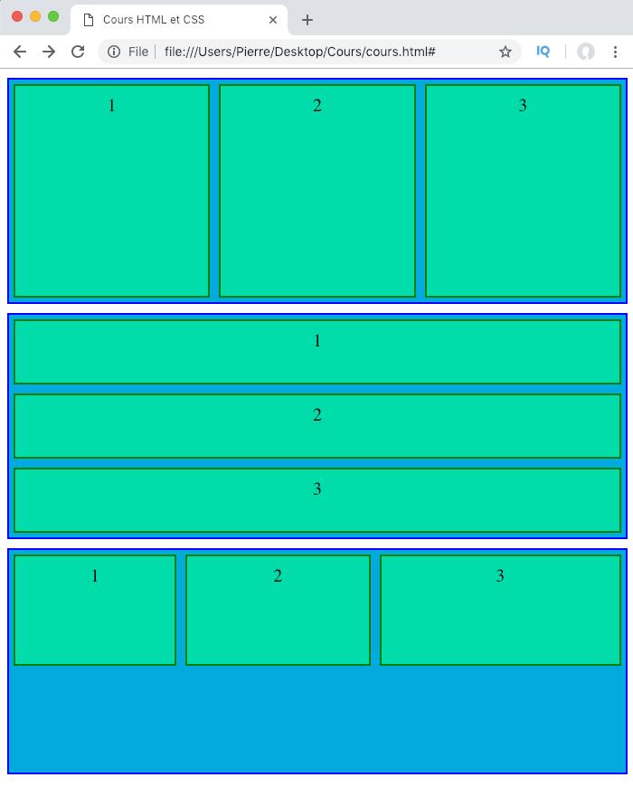 On gère la capacité des éléments flexibles à grossir dans un conteneur flex avec la propriété CSS flex-grow