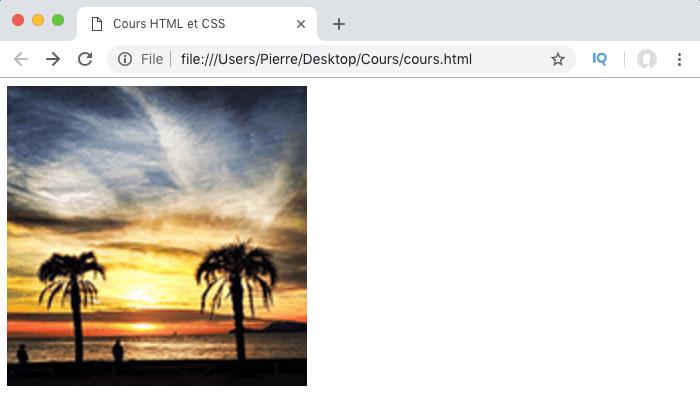 En ne précisant que la largeur width de l'image en HTML, la hauteur s'ajuste automatiquement