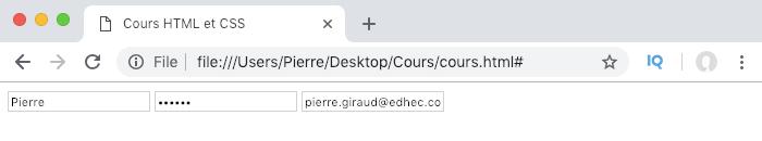 Auto complete input formulaire form HTML navigateur