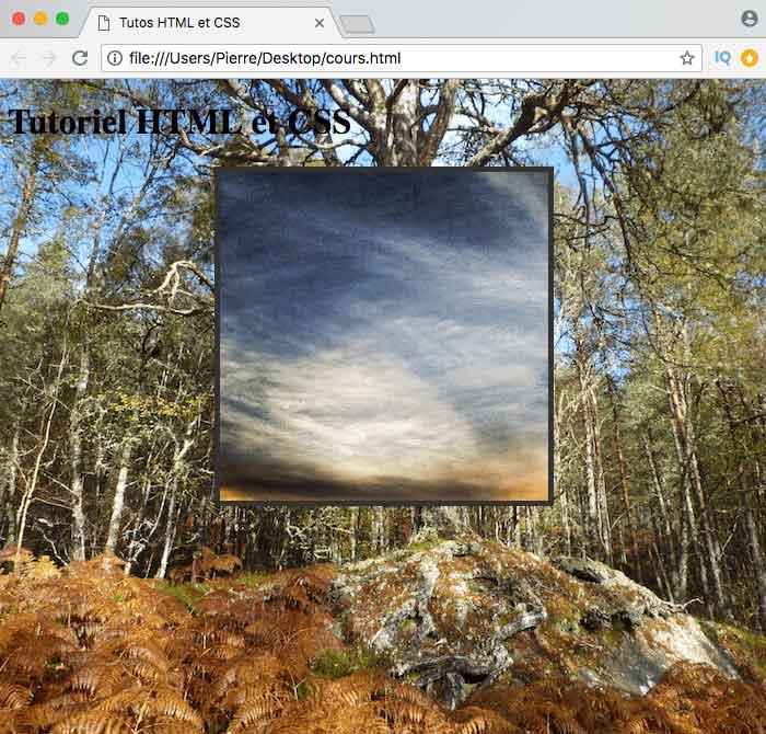 Nos différents éléments HTML disposent de différentes images de fond