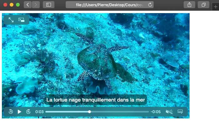 Le HTML nous permet d'insérer des vidéos dans nos pages et d'y ajouter des sous titres