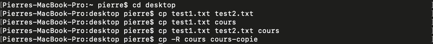 Utilisation de la commande shell bash cp pour copier des fichiers et des répertoires