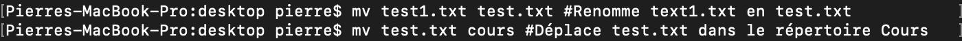 Utilisation de la commande shell bash mv pour renommer ou déplacer des fichiers
