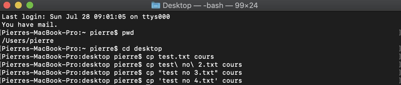 Echappement et citation de caractères dans le shell bash