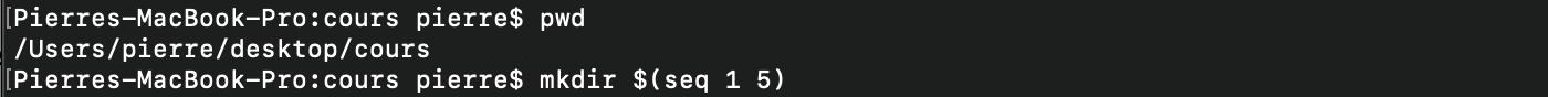 La substitution de commande du shell bash