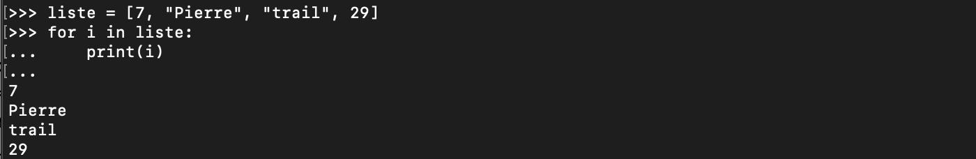 Exemple d'utilisation de boucle for Python