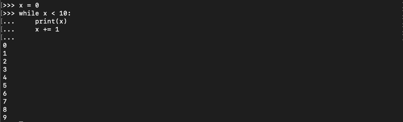Utilisation d'une boucle Python while