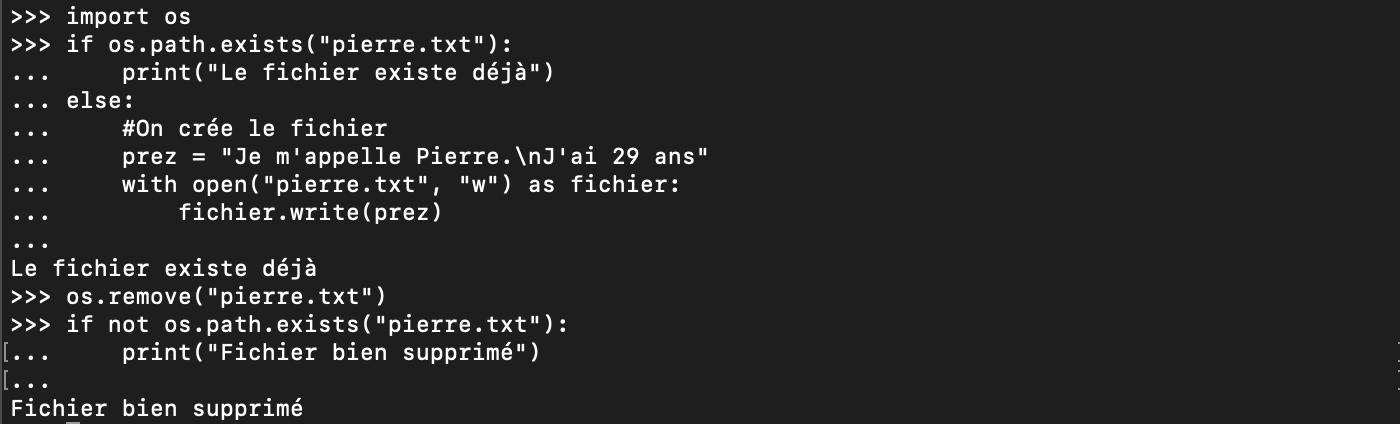 Supprimer un fichier Python avec remove
