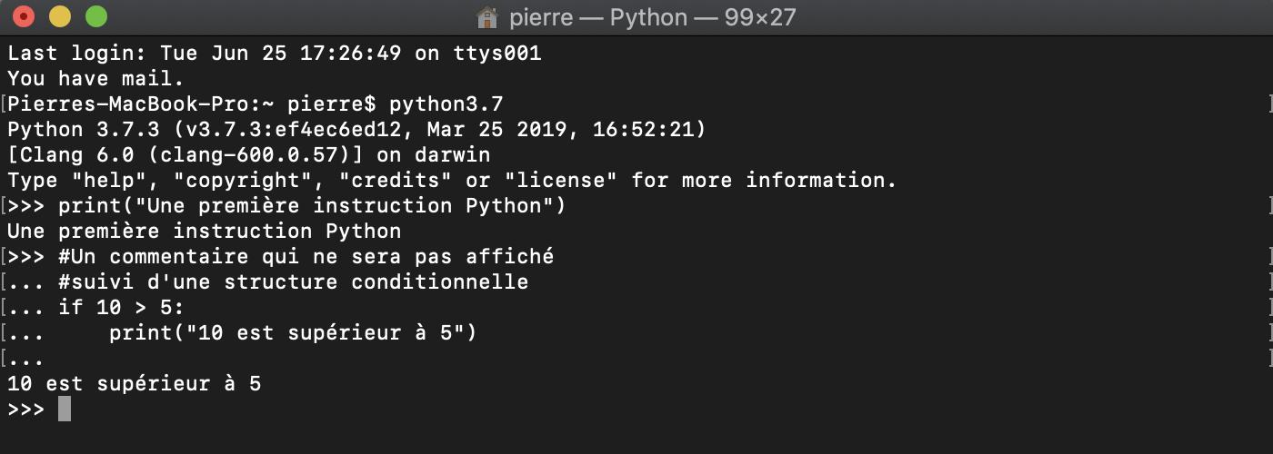 On utilise l'interpréteur Python en mode interactif
