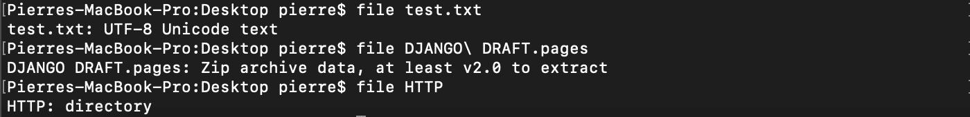 Utilisation de la commande shell bash file