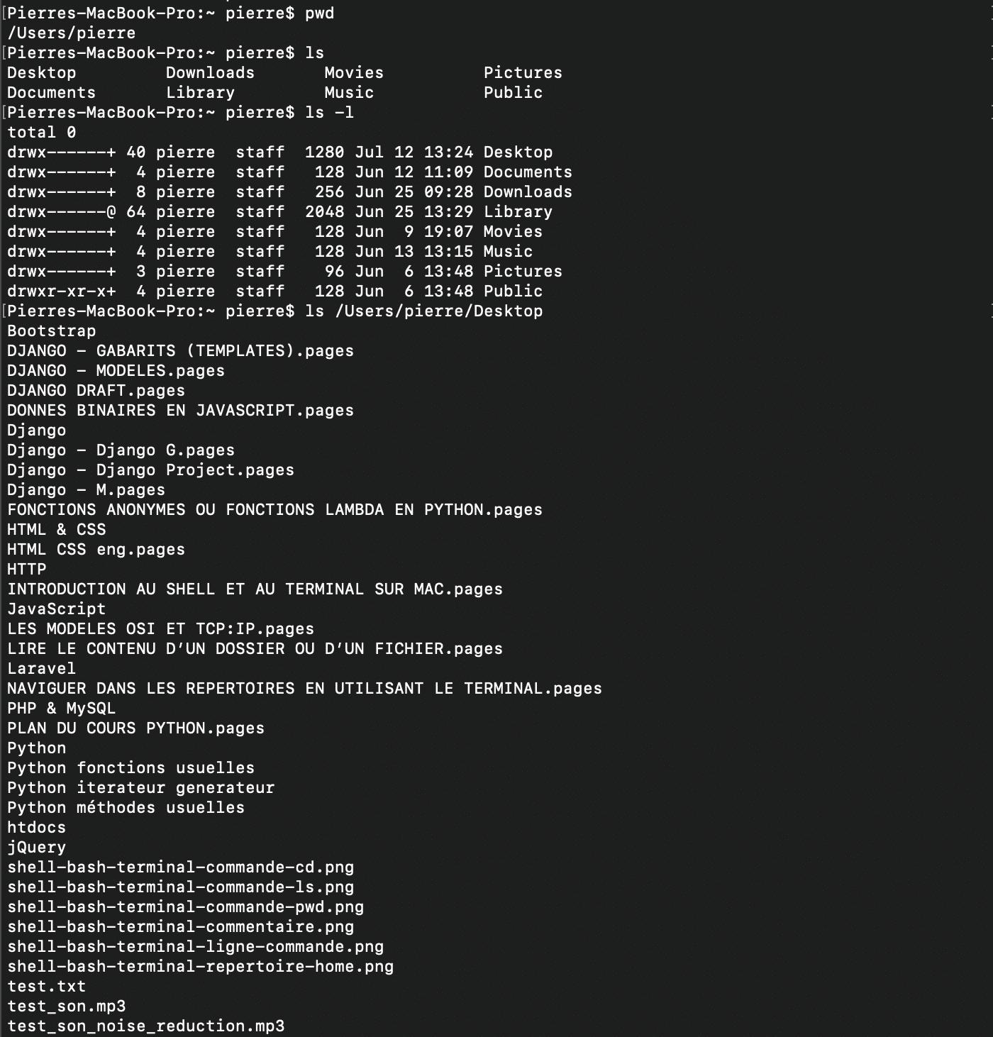 Utilisation de la commande shell bash ls avec argument -l