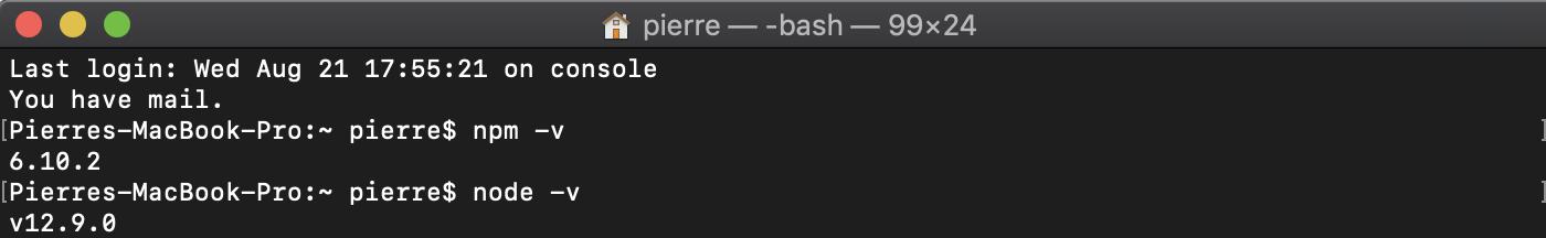 Vérification de la version de npm et de node.js installée